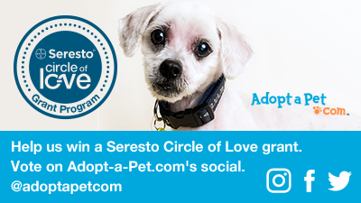 Help Second Chance Win the Grand Prize in Seresto's Circle of Love Social Grant Contest