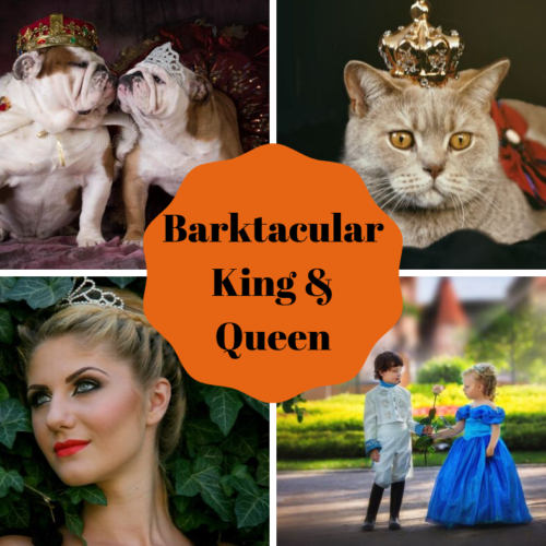 ROYALTY WANTED! Halloween Barktacular King & Queen Contest